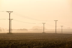 Sunset over the fields in fog Royalty Free Stock Images