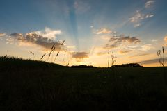 Sunset over the fields. With sunbeams and clouds in the blue sky stock photos