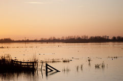 Sunset over flooded wetlands. Stock Images