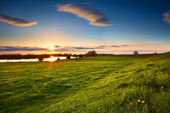 Sunset over flowering meadows Royalty Free Stock Image