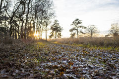 Sunset over footpath at winter landscape Royalty Free Stock Images