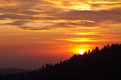 Sunset over the Forest Royalty Free Stock Image