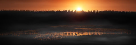 Sunset over forest. Panoramic view of sunset over pine tree forest with swamp or lake in foreground Royalty Free Stock Images