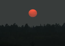 Sunset over the Forest. This image shows a sunset over a forest stock photo