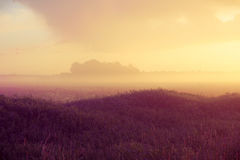 Sunset over forest with fog Royalty Free Stock Images