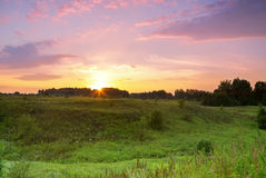 Sunset over the forest. green meadow ravine sunset. Stock Photos