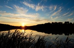 Sunset over the forest lake Royalty Free Stock Photo