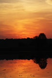 Sunset. Over the forest lake Stock Photography