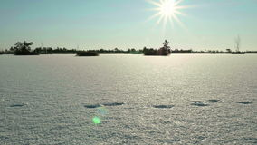 Sunset over the frozen lake.Clean and frosty daytime. Smooth dolly shot.  stock footage