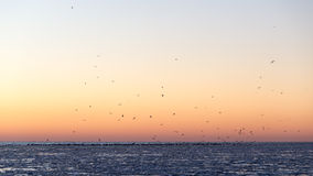 Sunset over frozen sea Royalty Free Stock Image