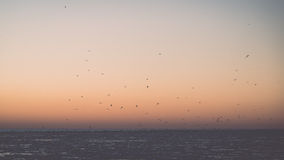 Sunset over frozen sea - vintage retro effect Stock Images