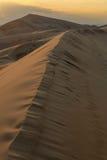 Sunset over the Gobi desert, dune Hongoryn, Mongolia Royalty Free Stock Photos