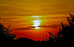 Sunset over the Goose Creek Forest Royalty Free Stock Photo