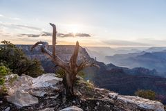 Sunset over the Grand Canyon. A sunset over the Grand Canyon, as seen from the South Rim Trail, near Yavapai Point stock image