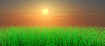 Sunset over grass meadow Stock Photo