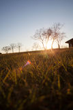 Sunset Over Grassy Field Royalty Free Stock Photography