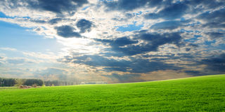 Sunset over green crops Stock Photos