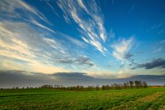 Sunset over green crops Royalty Free Stock Image