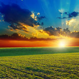Sunset over green field Royalty Free Stock Photo