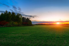 Sunset over the green field Stock Photo