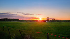 Sunset over the green field Royalty Free Stock Images