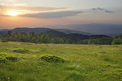 Sunset over green field Royalty Free Stock Images