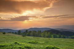 Sunset over green field Stock Photography
