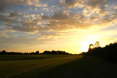 Sunset over green field. In summertime Royalty Free Stock Image