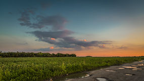 Sunset over the green field. Sunset on the green field, village road, pond, Belgrade Serbia Stock Photos