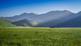 Sunset over green hills in Castelluccio at spring, Italy stock video