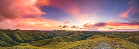 Sunset over the green meadow, Sumba island. royalty free stock image