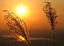 Sunset over the Han River, Seoul, South Korea. The sun sets over Seoul and the Han River, up in the mountain of South Korea Stock Photo