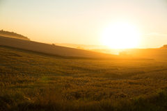 Sunset over a harvested field Royalty Free Stock Photos