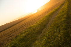 Sunset over a harvested field Stock Photography