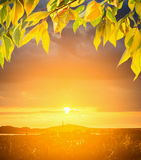 Sunset over  hill  and autumn leaves, Stock Images