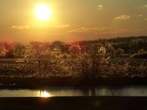 Sunset over ice, trees, and pond. The sun sets over a pond and trees in the aftermath of an ice storm stock photos