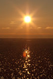 Sunset over icy sea Stock Images