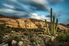 Sunset over Javelina Rocks in Saguaro National Park Royalty Free Stock Photos