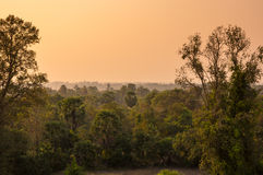 Sunset over the jungle Stock Photography