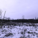 Sunset over Kampinos National Park in winter. Leszno, Poland Royalty Free Stock Images