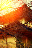 Sunset over kinkakuji Temple Stock Photos