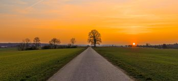 Sunset over Koengen. Sunset at the Klingenlinde tree on the meadows around Koengen am Neckar Royalty Free Stock Photo