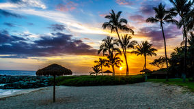 Sunset over the Lagoon and beach with Palm trees and colorful sky Stock Photos