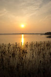 Sunset over lake. Scenic view of golden sunset over lake with silhouetted reeds in foreground Stock Photo