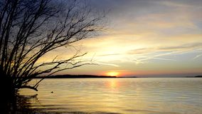 Sunset over a lake. Sunset over a calm lake with gentle waves and a willow tree stock footage