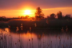 Sunset. Over the lake, May 2016, Kaliningrad region stock photo