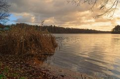 Sunset over lake with a reed in foreground. Siek county in north Germany stock images