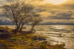 Sunset over a lake seen from the shore royalty free stock image