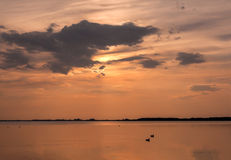 Sunset over the lake with silhouettes of two ducks. Cloudy sky and calm water Stock Images