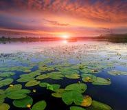 Sunset over lake surface Stock Photo